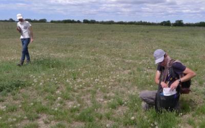 Salimos al campo a recoger semillas, el origen de Fleurs Locales